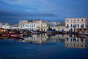 Puerto de Tunez